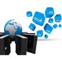 Domains & Hosting